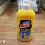 【やっておきたいことリストを消化】見て見ぬふりしていた「お風呂の床の汚れ」を一掃!!